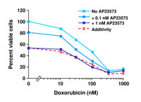 Figure 3: AP23573 exhibits additive growth inhibitory effects with doxorubicin in tumor cell lines (Rivera 2004b)