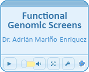 Functional Genomic Screens